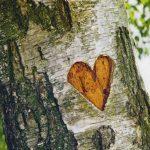 Die Liebe bleibt
